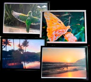 Produção de quadros e calendários personalizados